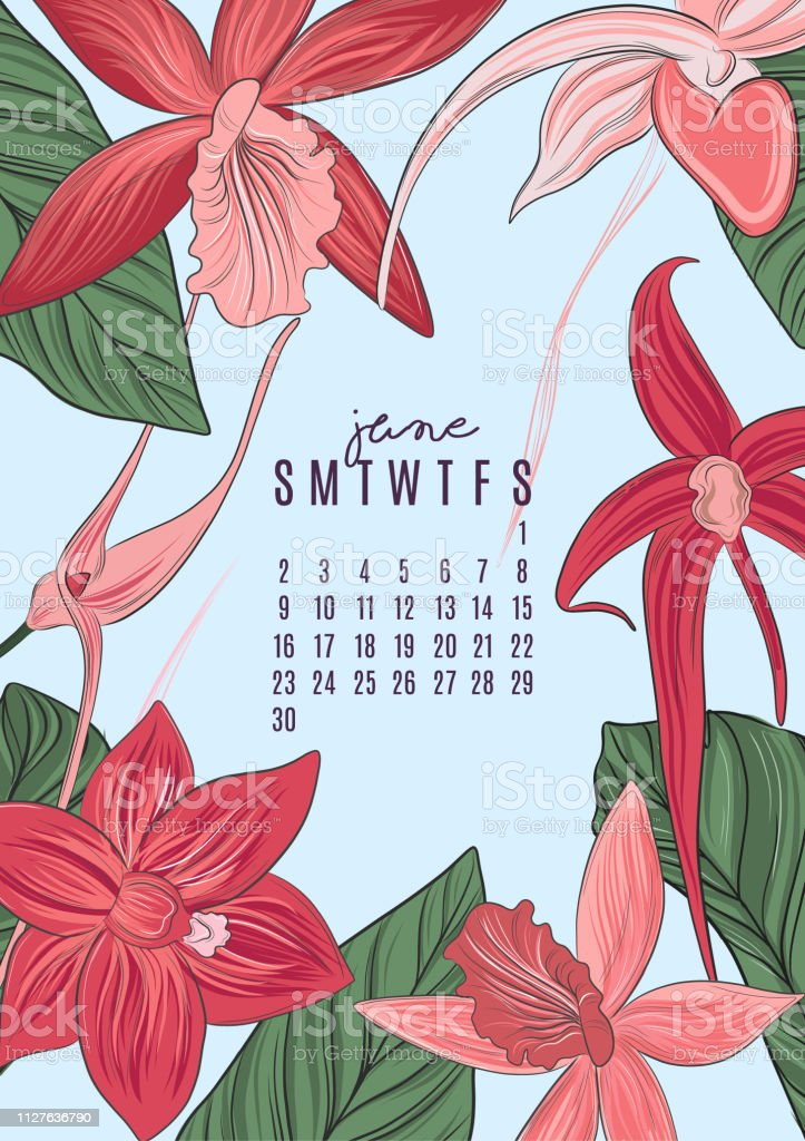Vector Printable A4 Size 2019 Calendar Template For June