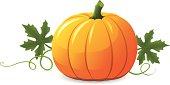 istock Vector pumpkin illustration on white background 165688947