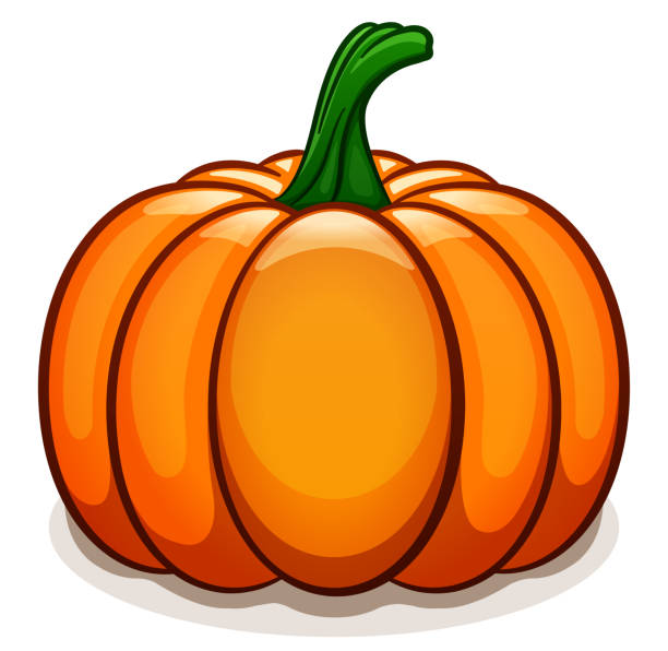 vector pumpkin on white background - pumpkin stock illustrations