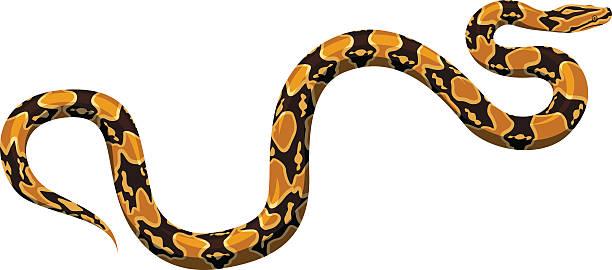 vector python - ヘビ点のイラスト素材/クリップアート素材/マンガ素材/アイコン素材