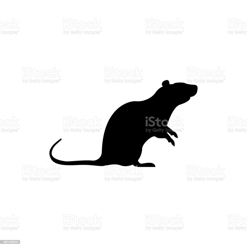 vector rat silhouette view side for retro icons emblems