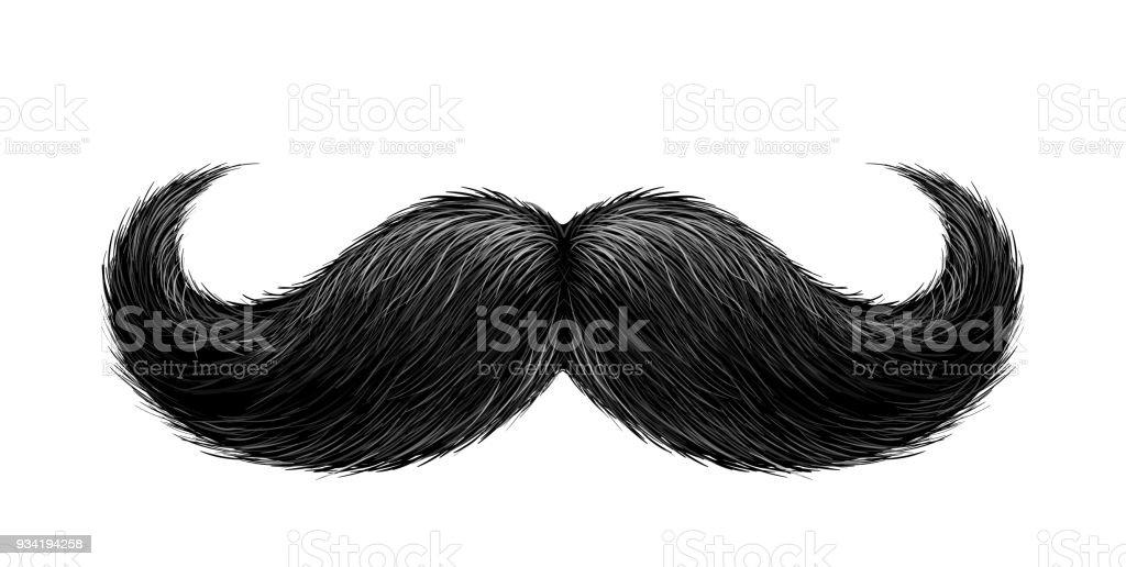 Vector realistic black mustache vector art illustration
