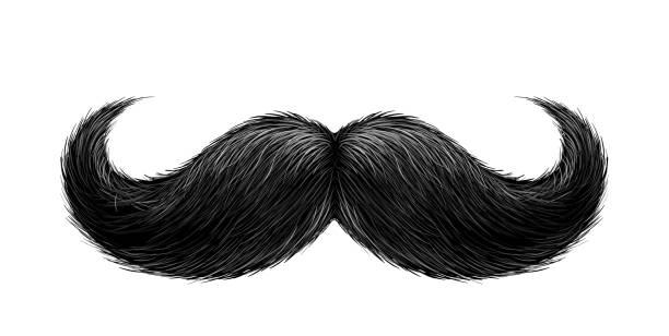 ilustrações, clipart, desenhos animados e ícones de bigode preto realista de vetor - bigode