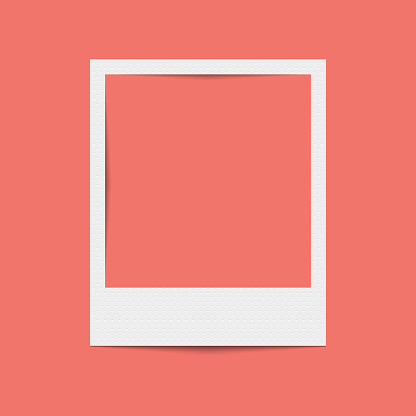 Vector realistic blank photo frame