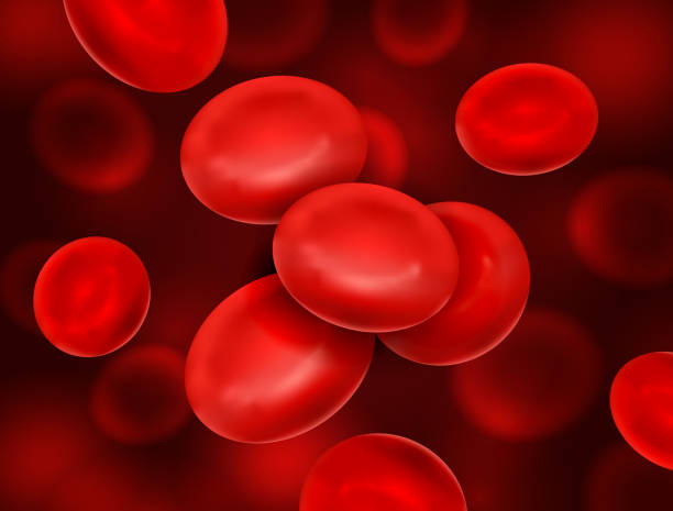 Vector realistic blood cells flow - macro medical illustration Vector realistic blood cells flow - macro medical illustration red blood cell stock illustrations