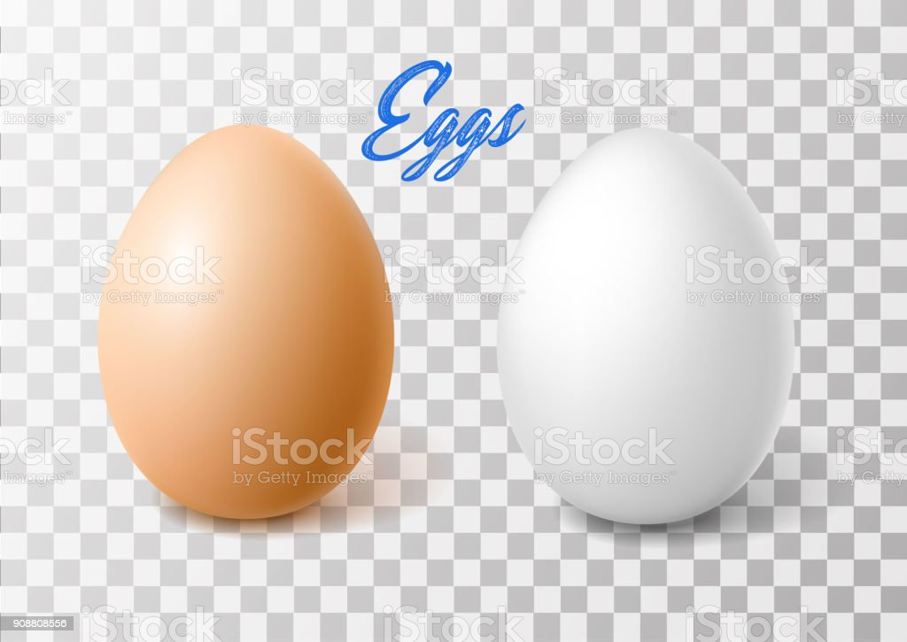 Vector realistic chicken brown egg, easter spring