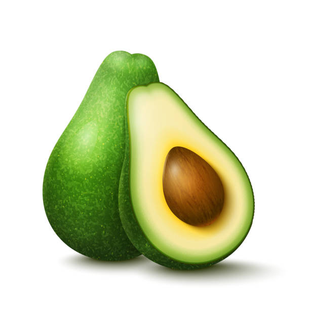 illustrazioni stock, clip art, cartoni animati e icone di tendenza di vector realistic fresh fruit avocado - avocado