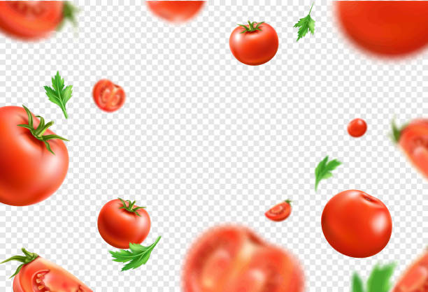 Vector realistic fresh red ripe tomato pattern Vector red ripe tomato whole and sliced seamless pattern. 3d juicy raw vegetables for healthy eating product packaging. Fresh vegeterian ingredient, organic food. tomato stock illustrations