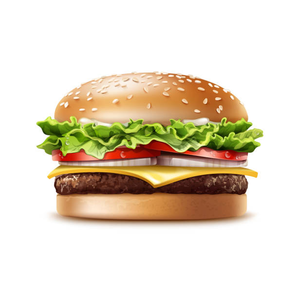 stockillustraties, clipart, cartoons en iconen met vector realistische hamburger, fastfood - hamburgers