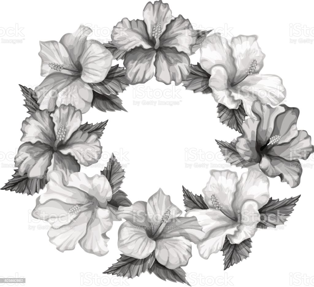 Vector realistic hibiscus template isolated stock vector art more bouquet flower plant hawaii islands pacific islands vector realistic hibiscus template izmirmasajfo