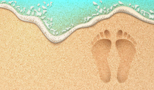 vector realistic human footprint on sea beach sand - beach stock illustrations