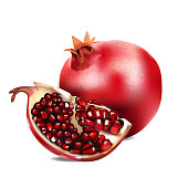 Vector realistic illustration of pomegranate.