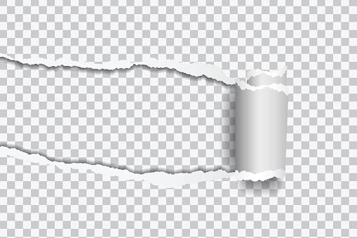 텍스트 프레임 투명 한 배경에 압 연 가장자리 찢어진된 종이의 벡터 현실적인 그림 가장자리에 대한 스톡 벡터 아트 및 기타 이미지