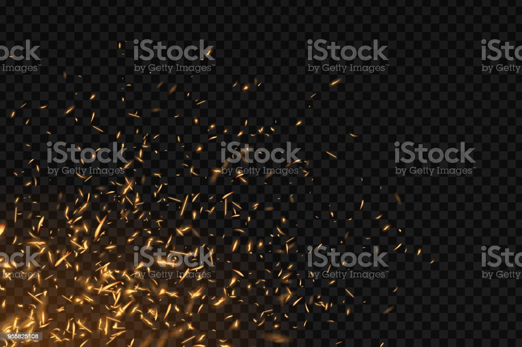 Vector realistic isolated fire effect for decoration and covering on the transparent background. Concept of sparkles, flame and light.