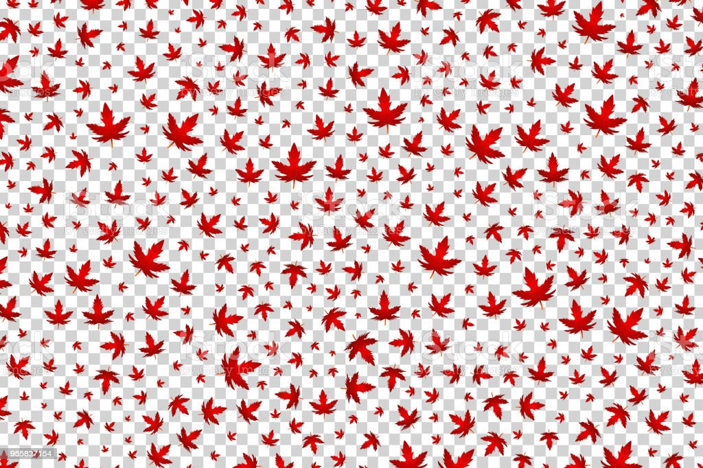 Vector Realistic Isolated Maple Leaf Confetti For Decoration