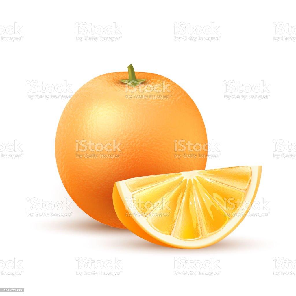 Vector realistic orange fruit slice 3d isolated vector art illustration