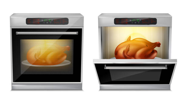 Vector realistic oven with turkey on plate inside Vector realistic oven with baked turkey on white plate inside, with open and close door isolated on background. Process of baking chicken in modern multifunction stove with touch menu and timer oven stock illustrations