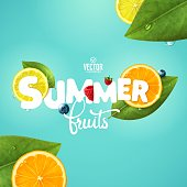 Vector realistic summer fruits composition