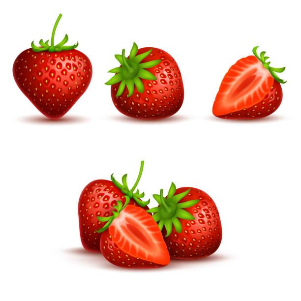 illustrations, cliparts, dessins animés et icônes de vector réaliste doux et frais aux fraises isolé sur fond blanc - fraise