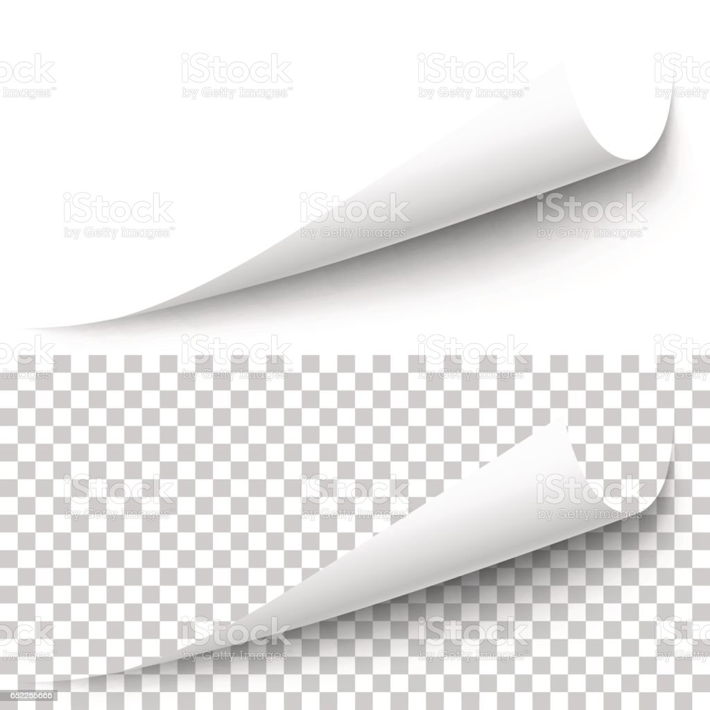Vector realistic white paper corner vector art illustration