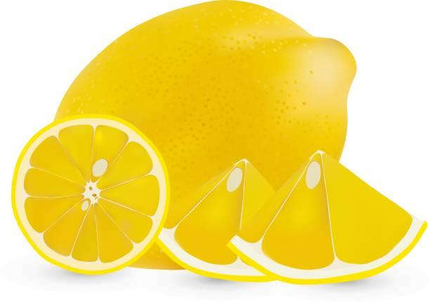 Vector realistic whole lemon and half a lemon isolated on white background. Isolated lemon on white backgrpund. Citrus fruit Vector realistic whole lemon and half a lemon isolated on white background. Isolated lemon on white backgrpund. Citrus fruit limoen stock illustrations