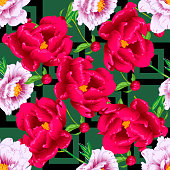 Vector red and pink peony floral botanical flowers. Wild spring leaf wildflower isolated. Engraved ink art. Seamless background pattern. Fabric wallpaper print texture.