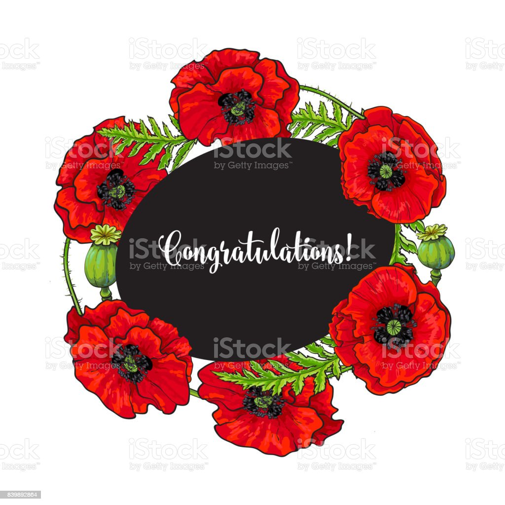 Vector Red Poppy Flower Blossom Blooming Template Royalty Free