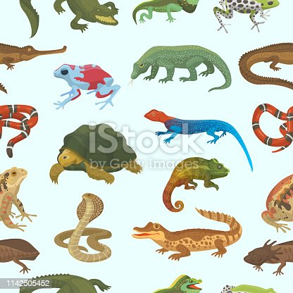 Vector reptile nature lizard animal wildlife wild chameleon, snake, turtle, crocodile illustration of reptilian isolated on white background green amphibian.