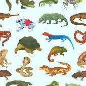 Vector reptile nature lizard animal wildlife wild chameleon, snake, turtle, crocodile illustration of reptilian isolated on white background green amphibian.