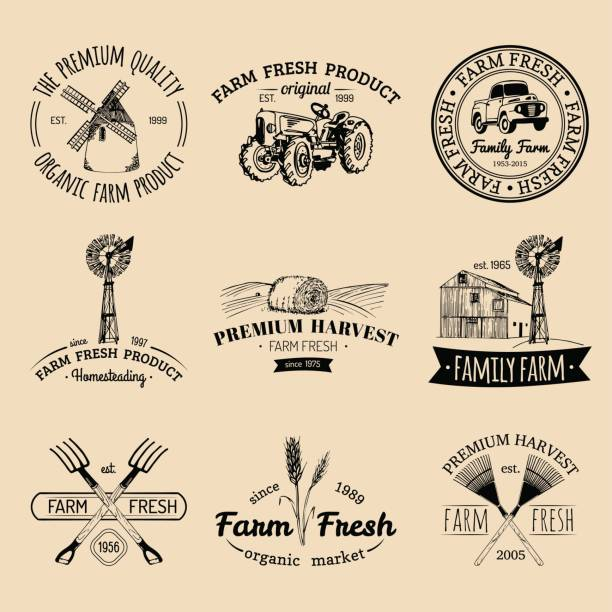 Best Farmhouse Style Illustrations, Royalty-Free Vector Graphics