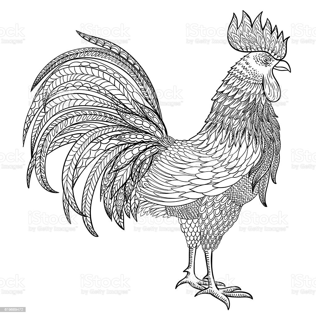 vector rooster, sign of 2017 year vektorkonstillustration