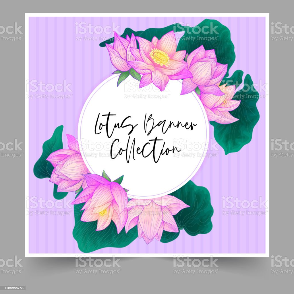 Vector Round Banner Purple Hand Draw Lotus Flower With Green