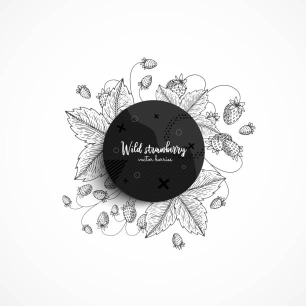 Vector round banner with wild strawberry. Modern banner with hand drawn berries. With place for text. Healthy food. Great design for natural and organic products, label, poster, packaging design. vector art illustration