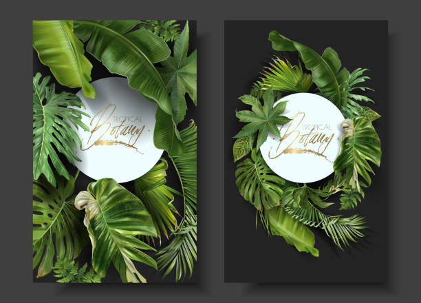 Vector round banners with green tropical leaves Vector round banners with green tropical leaves on black background. Exotic botanical design for cosmetics, spa, perfume, beauty salon, travel agency, florist shop. Best as wedding invitation cards banana borders stock illustrations