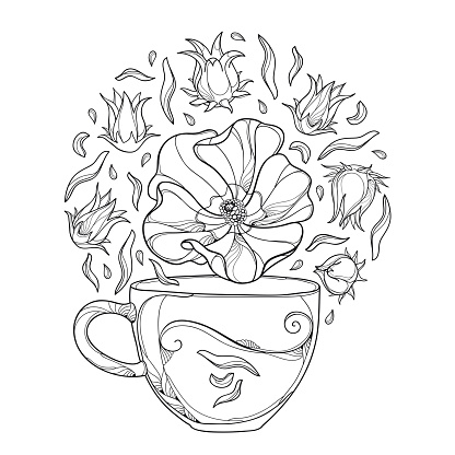 Vector round bunch of outline Roselle or Hibiscus sabdariffa or carcade herbal tea with fruits and flower in black isolated on white background.