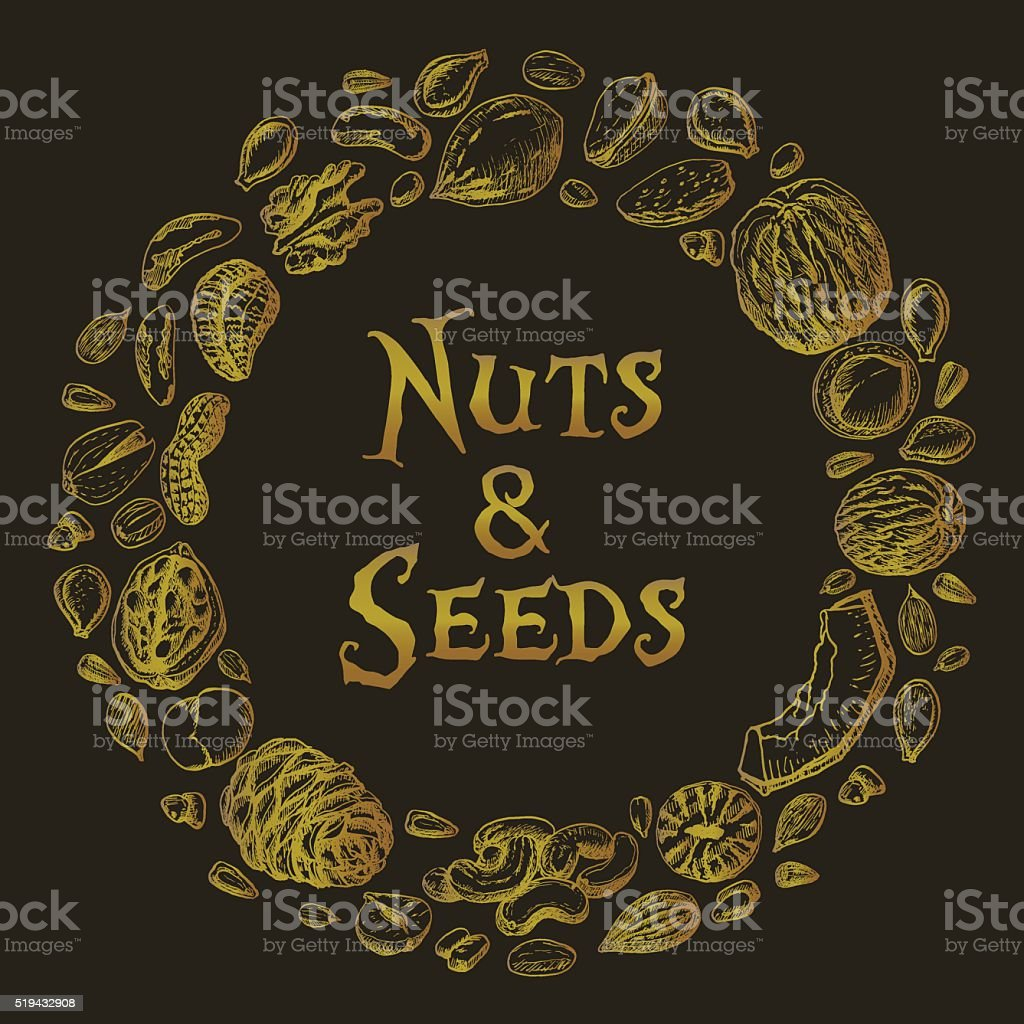 Vector round frame of nuts and seeds vector art illustration
