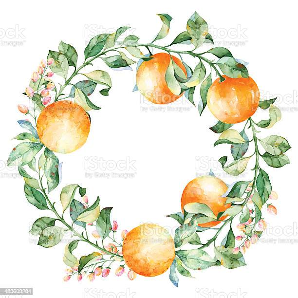 Vector round frame of watercolor orange and flowers vector id483603284?b=1&k=6&m=483603284&s=612x612&h=pghyzhefw0qaaiaum3qkjq6pstibg0zkpm  t4rphds=