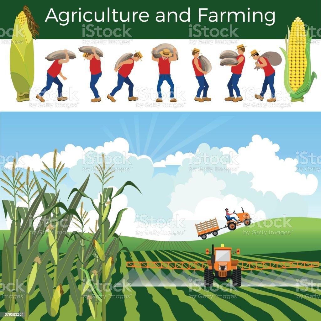 Vector rural landscape vector art illustration