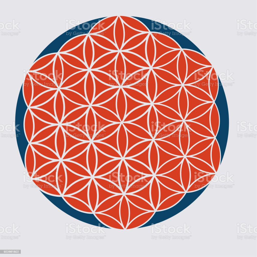 Vector Sacred Geometry Illustration Variant Of The Flower Of Life
