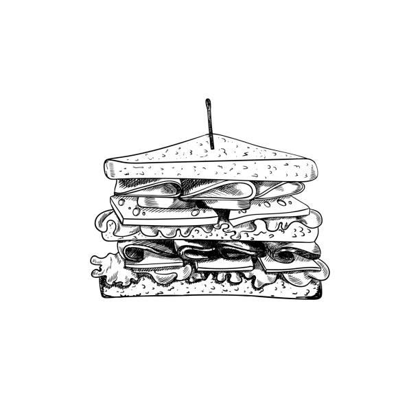 illustrazioni stock, clip art, cartoni animati e icone di tendenza di vector sandwich with toothpick sketch, hand drawn illustration, outline black drawing isolated. - panino