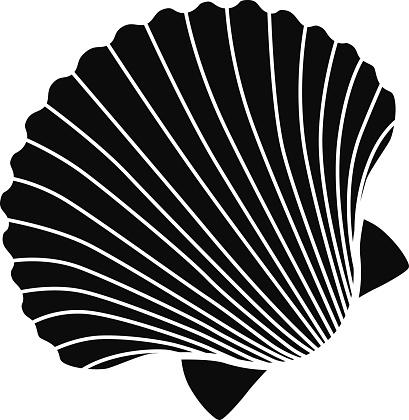 vector scallop shell icon stencil in black and white