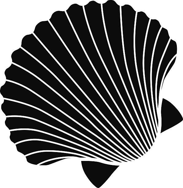 vector scallop shell icon stencil in black and white - scallop stock illustrations, clip art, cartoons, & icons