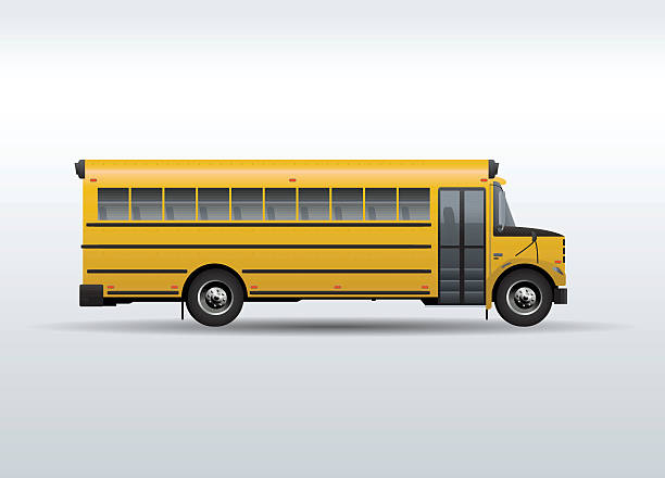illustrations, cliparts, dessins animés et icônes de vector school bus isolated on white background - bus scolaires