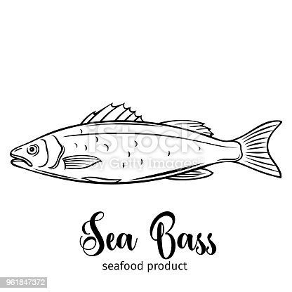 Free Download Of Animals Outline Silhouette Cartoon Bass Fish Free