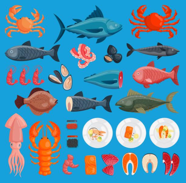 vector sea food cuisine fresh fish and shrimp, crab, squid illustration set design flat fish and crab food oyster seafood shrimp menu ctopus animal shellfish - redfish stock illustrations, clip art, cartoons, & icons