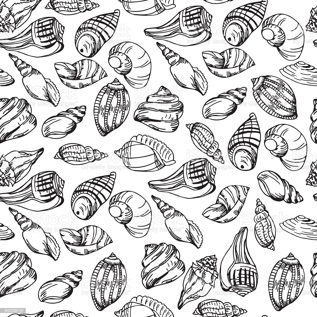 Vector Sea Pattern Summer Background With Shell Elements Royalty Free