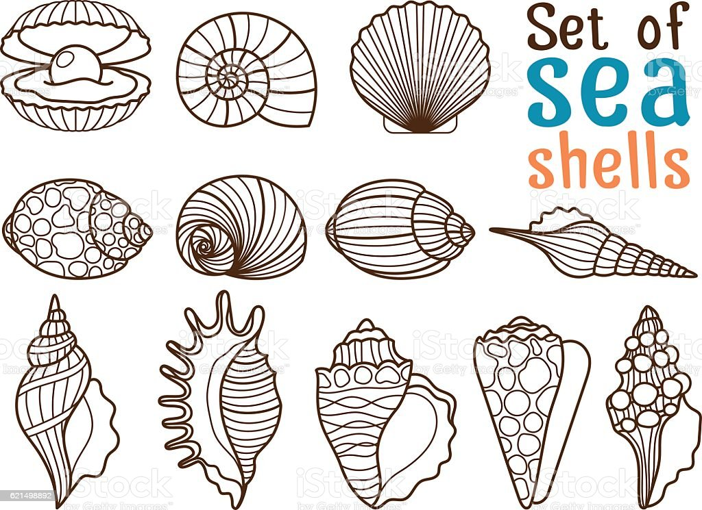 Vector sea shell line icons vector sea shell line icons - immagini vettoriali stock e altre immagini di arte royalty-free