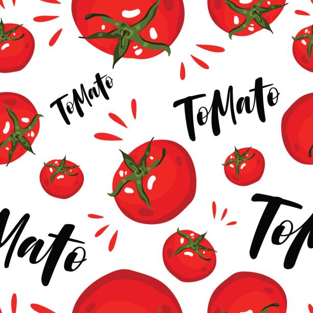 vector seamless background with red tomatoes on white. - tomato stock illustrations