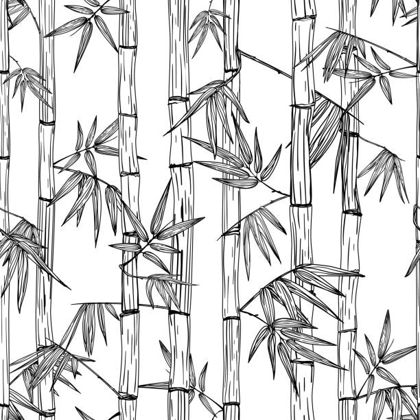 Vector seamless bamboo forest pattern. Design for textile print, asian spa, massage, cosmetics package, materials. vector art illustration