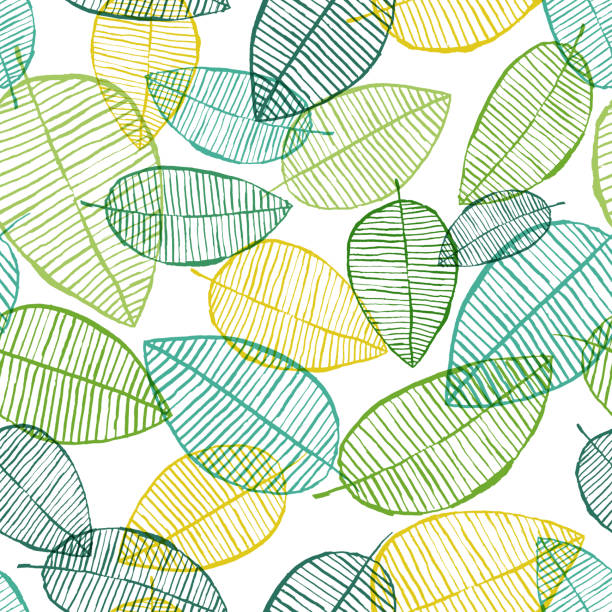 vector seamless outline leaves pattern. green and white spring background. scandinavian design for fashion textile print - spring fashion stock illustrations, clip art, cartoons, & icons